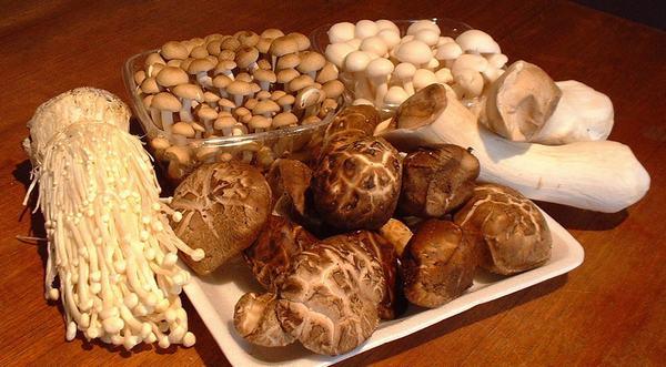 Các loại nấm như nấm hương, nấm lim xanh, nấm Linh Chi... giúp hỗ trợ hệ miễn dịch hoạt động tốt