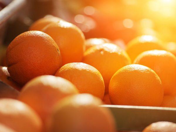 Đây là những laoị hoa quả không thể thiếu trong chế độ dinh dưỡng hàng ngày của mỗi người. Không chỉ có tác dụng tốt trong tăng sức đề kháng, cam, quýt còn được biết đến với hiệu quả tuyệt vời là phòng bệnh ung thư vòm họng. Tác dụng tuyệt vời này đến từ chất nomiilin có tác dụng phân giải các chất gây ung thư, giảm độc tính, cắt giảm chuỗi cacbon dài của acid nucleic, ngăn chặn ung thư tiến triển.
