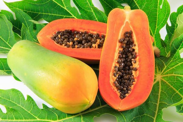 Trong đu đủ rất giàu vitamin C,beta-cryptoxanthin và zeaxanthin có công dụng làm giảm nguy cơ nhiễm virus HPV gây ung thư cổ tử cung.
