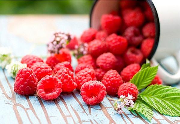 Quả mâm xôi rất giàu dinh dưỡng, ít calo tốt cho sức khỏe, đồng thời ngăn ngừa sự phát triển của tế bào ung thư cổ tử cung.