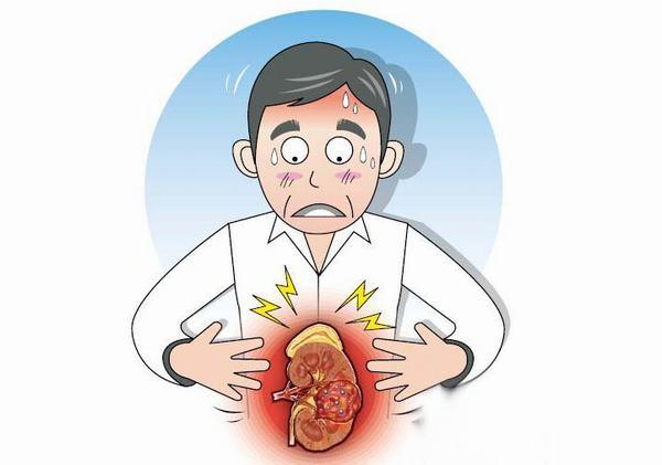 Cảm giác đau tức ở bụng, lưng, sờ thấy u ở bụng... là những triệu chứng thường gặp khi bị ung thư thận