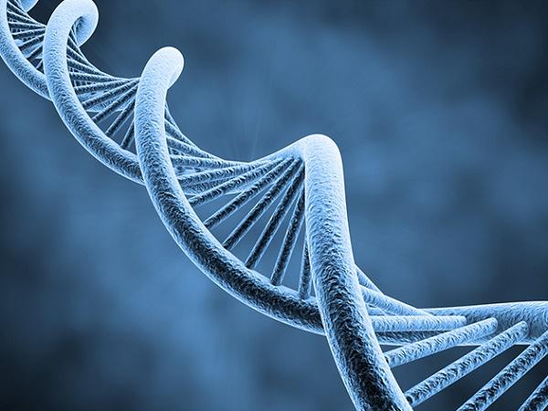 Đột biến di truyền cũng là một trong những yếu tố gây ung thư