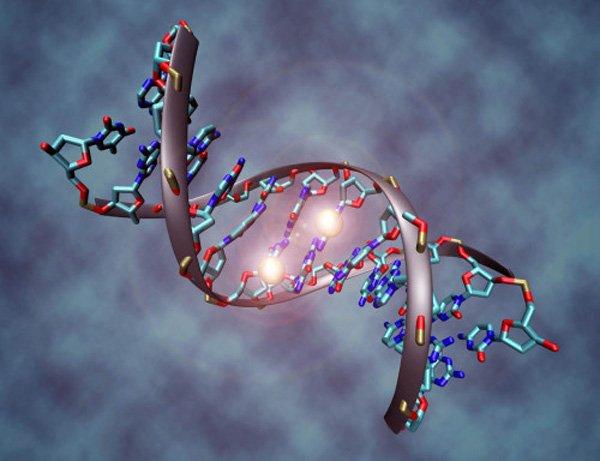 Khoảng 5% bệnh nhân ung thư đại - trực tràng được xác định có liên quan đến di truyền
