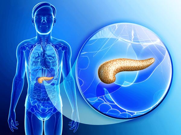 Ung thư tuyến tụy xảy ra khi có sự phát triển và phân chia bất thường tế bào tuyến tụy – cơ quan nằm ở vùng giữa bụng, được bao quanh bởi lá lách, gan, dạ dày, túi mật và ruột non…