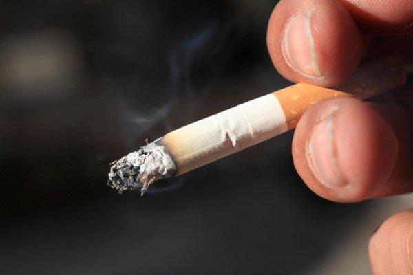 Khoảng ½ bệnh nhân được chẩn đoán mắc ung thư bàng quang ở cả nam giới và nữ giới được xác định có liên quan đến khói thuốc