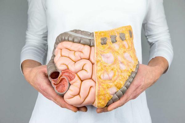 Chế độ ăn uống thiếu khoa học làm tăng nguy cơ mắc các bệnh ung thư ở đường tiêu hóa